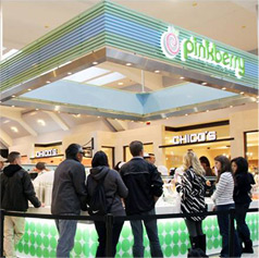 Are You Passionate About Food? Then a Frozen Yogurt Franchise Opportunity Is Right for You