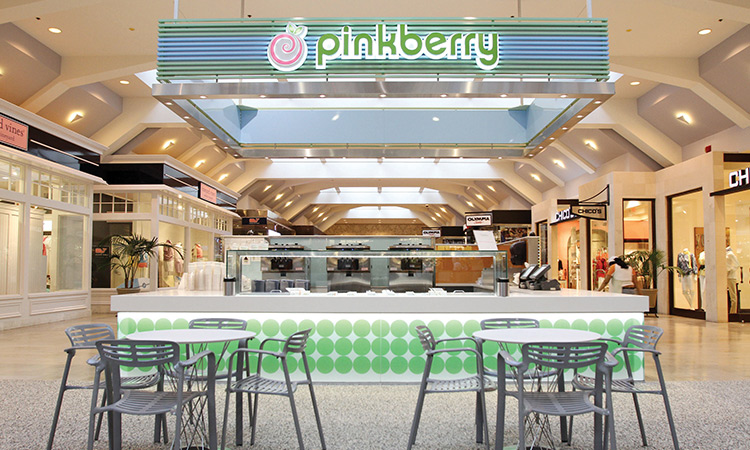 Why a Frozen Yogurt Franchise Can Work in Any Climate